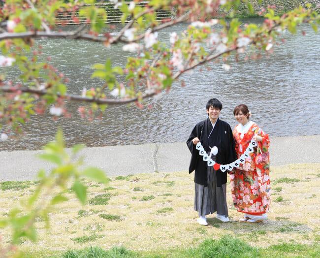 17赤地桜に鶴飛翔 [image 5 of 9]